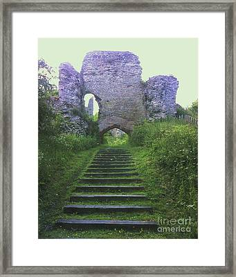 Framed Print featuring the photograph Castle Gate by John Williams