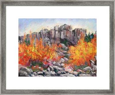 Castle Rock Framed Print by Bruce Schrader