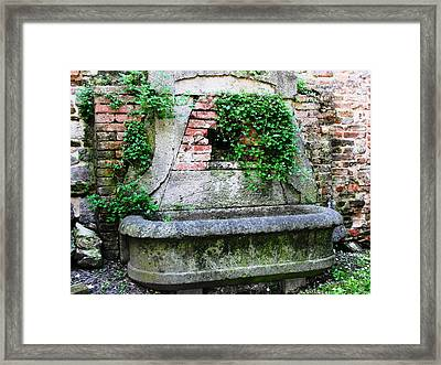 Castle Trough Planter  Framed Print by Natalie Ortiz