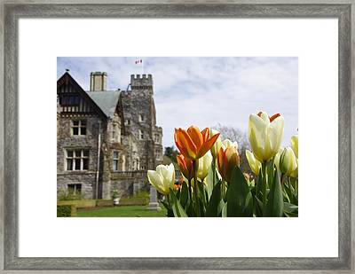 Castle Tulips Framed Print