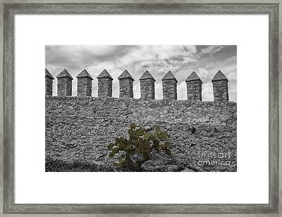 Castle Wall Framed Print