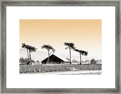 Castroville Farming Framed Print