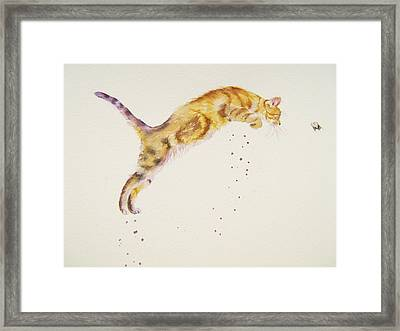 Cat-a-pult Framed Print