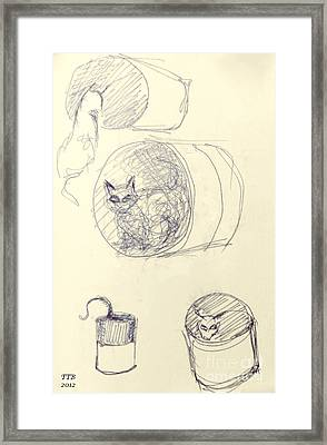Cat And Cans  Framed Print