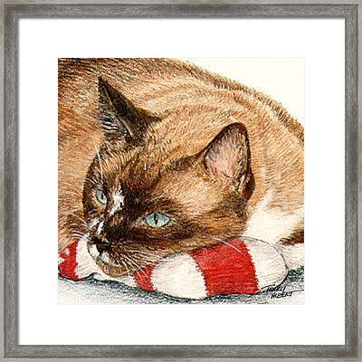 Cat And Toy Framed Print