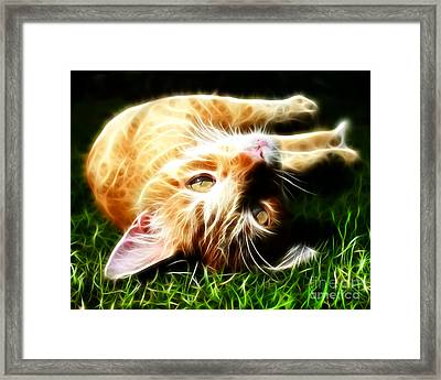 Cat At Play Framed Print by Jo Collins