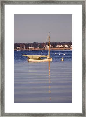 Cat Boat Framed Print