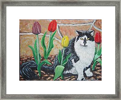 Cat By The Tulips  Framed Print