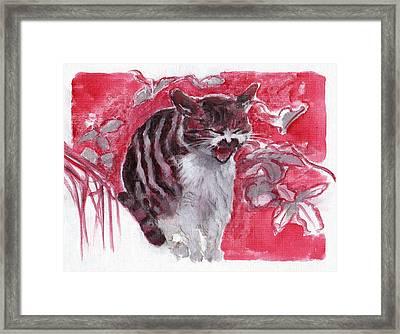 Cat Complains  Framed Print