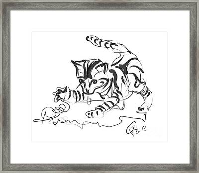 Cat- Cute Kitty  Framed Print by Go Van Kampen