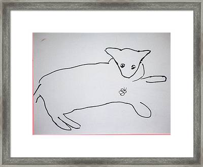 Cat Drawing Framed Print by AJ Brown