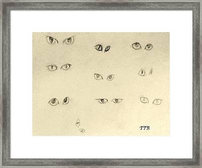 Cat Eyes -2 Framed Print
