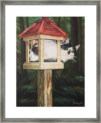 Cat House Framed Print