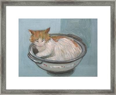 Cat In Casserole  Framed Print