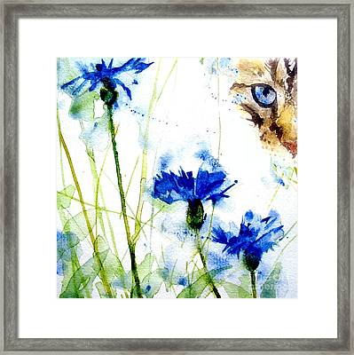 Cat In The Cornflowers Framed Print by Paul Lovering