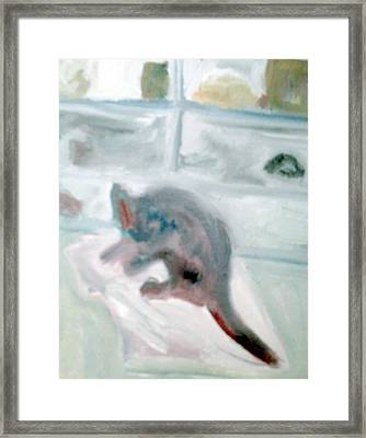 Cat In The Garage On A Mat Framed Print