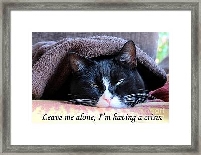 Framed Print featuring the photograph cat Leave me alone by Art Photography
