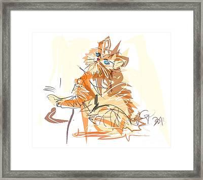 Cat Little Tiger Kitty Framed Print