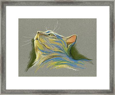 Cat Looking Up To Heaven Framed Print by MM Anderson