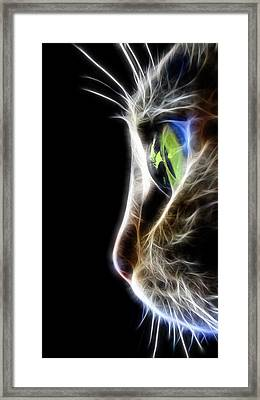 Cat Macro  Framed Print