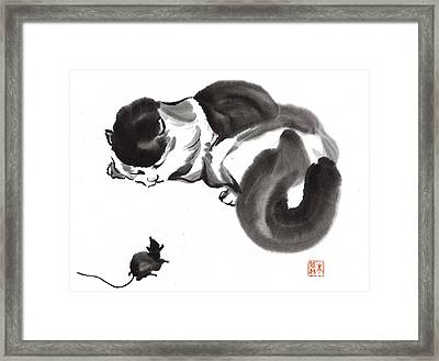 Cat Nap Framed Print by Yolanda Koh