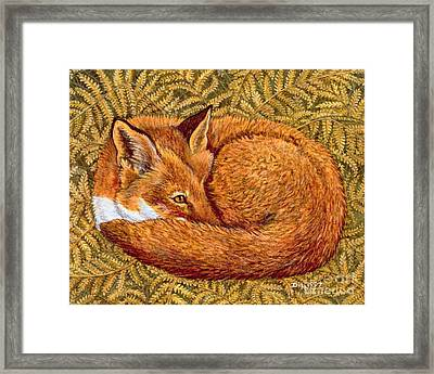 Cat Napping Framed Print by Ditz