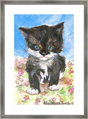 Cat On Bedspread Framed Print by Alice Grimsley