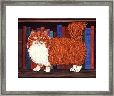 Cat On Book Shelf Framed Print