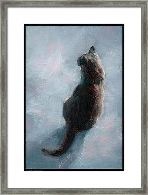 Cat On Concrete Framed Print by Diana Moses Botkin