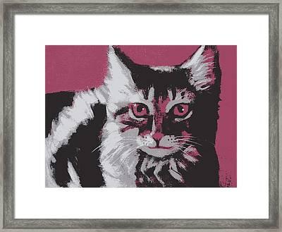 Cat On Red Framed Print