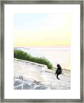 Cat On The Port Framed Print by Veronica Minozzi