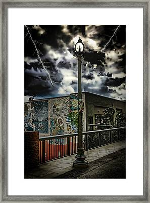 Cat On Wall Street Framed Print by John Haldane