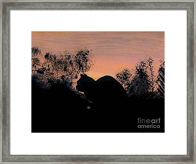 Framed Print featuring the drawing Cat - Orange - Silhouette by D Hackett