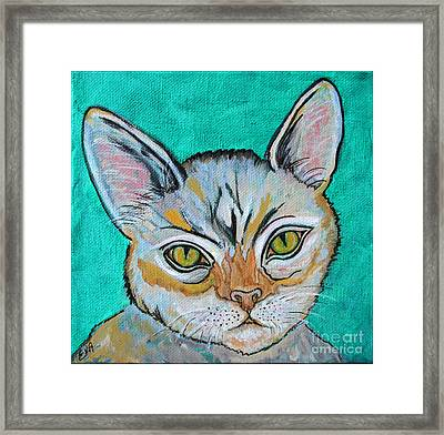 Cat Painting - Quick Silver Tabby Framed Print by Ella Kaye Dickey