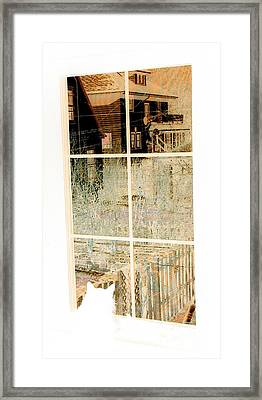 Framed Print featuring the photograph Cat Perspective by Jacqueline McReynolds