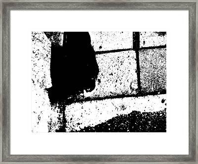 CAT Framed Print by Rick Todaro