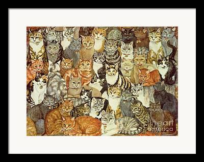 Cat Framed Prints
