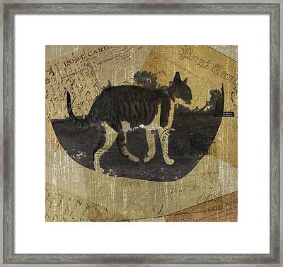 Cat Travels Framed Print