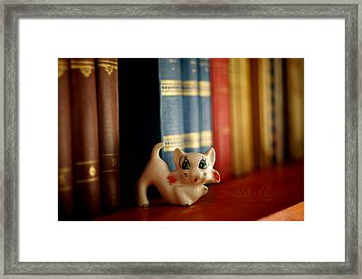 Cat Trinket And Books Framed Print by Ioan Panaite