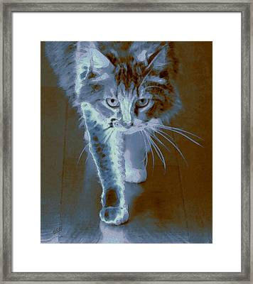 Cat Walking Framed Print by Ben and Raisa Gertsberg