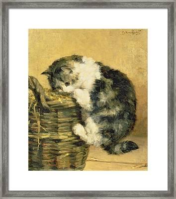 Cat With A Basket Framed Print by Charles Van Den Eycken