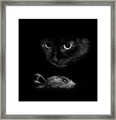 Cat With A Dead Bird Framed Print