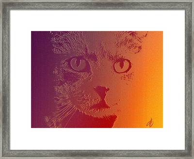 Framed Print featuring the photograph Cat With Intense Stare Abstract  by Denise Beverly