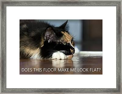 Cat Worries Framed Print