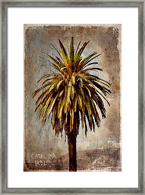Catalina 1932 Postcard Framed Print by Carol Leigh