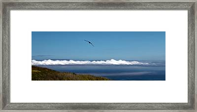Catalina Breeze - Mike Hope Framed Print