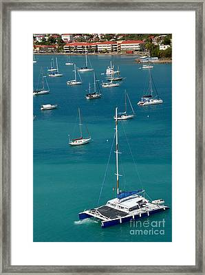 Catamaran  St Thomas Usvi Framed Print by Amy Cicconi
