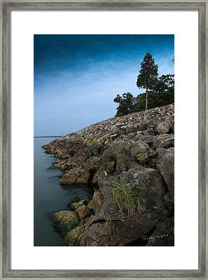 Catawba Point Shoreline Framed Print by Terri Harper