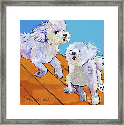 Catch Me     Framed Print by Pat Saunders-White
