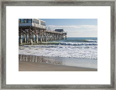 Catch Of The Day Framed Print by Brian Harig